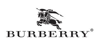 Burberry logo image