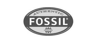 Fossil logo image
