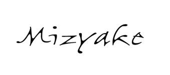 Mizyake Couture logo image