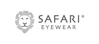 Safari logo image