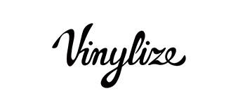Vinylize logo image